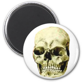 Skull The MUSEUM Zazzle Gifts Magnet