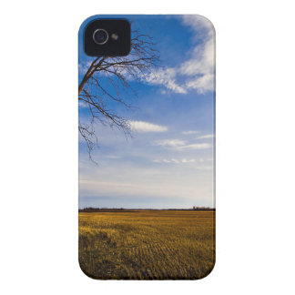 Sky Frozen In Time iPhone 4 Case-Mate Case