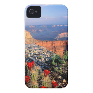 Sky Grand Canyon Spectical iPhone 4 Case-Mate Case