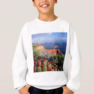 Sky Grand Canyon Spectical Sweatshirt