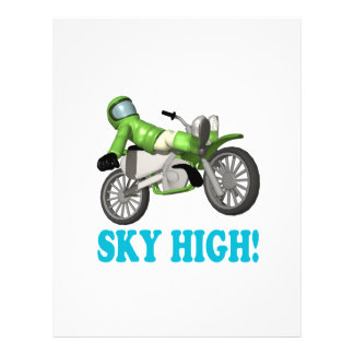 Sky High 2 Flyer