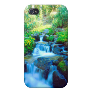 Sky Meadows in the Sierra Nevada Mountains Case For The iPhone 4