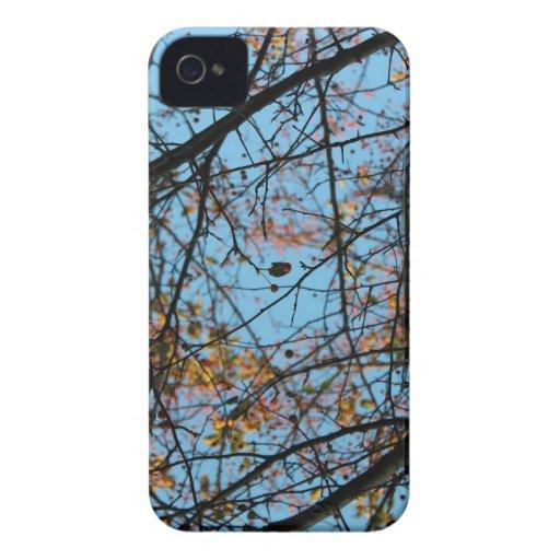 Sky pattern blackberry bold cases