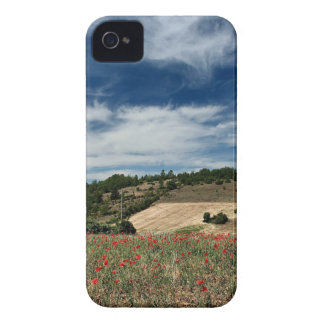 Sky Poppyfield Exposure iPhone 4 Case-Mate Case