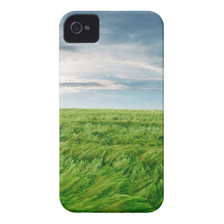 Sky Stormy Field iPhone 4 Cover