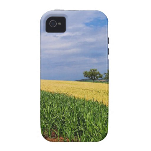 Sky Summer Fields iPhone 4/4S Cover