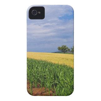 Sky Summer Fields iPhone 4 Case-Mate Cases
