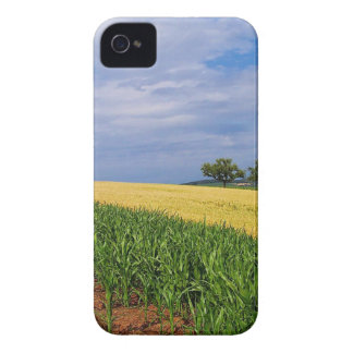 Sky Summer Fields iPhone 4 Case-Mate Cases