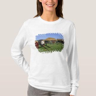 Skye Museum, Kilmuir, Isle of Skye, Highlands, T-Shirt