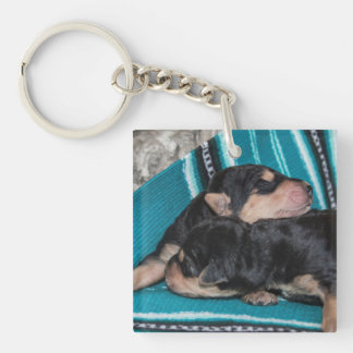 Sleeping Airedale Puppies Key Ring