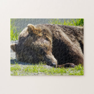 Sleeping Alaskan Grizzly Jigsaw Puzzle