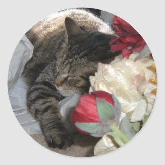 Sleeping Angel, Mr. Rogers Classic Round Sticker