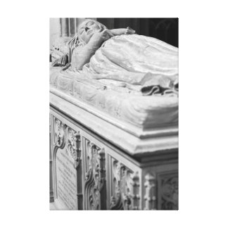 Sleeping Beauty Gallery Wrapped Canvas