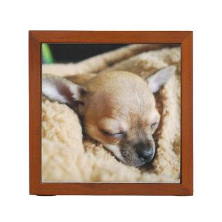 Sleeping Chihuahua Desk Organizer