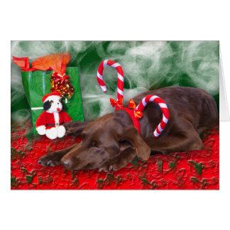 Sleeping Chocolate Lab Wearing Peppermint Sticks Card