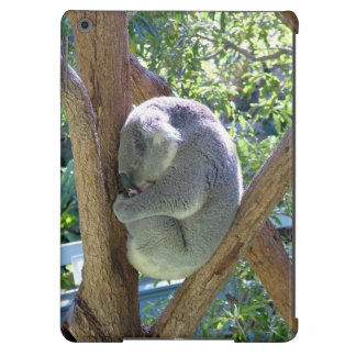 Sleeping Koala Bear iPad Air Cases