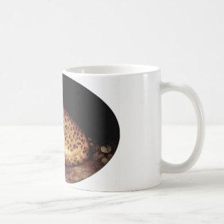 Sleeping Leopard by George Stubbs Coffee Mug
