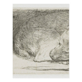 Sleeping puppy by Rembrandt Postcard