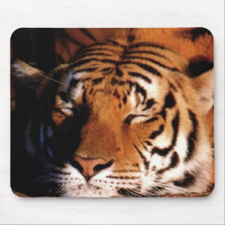 Wildlife Mouse Pads