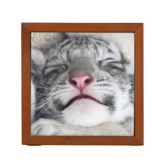 Sleeping White Tiger Kitten Desk Organiser