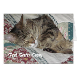 Sleepy Tabby Cat  Get Well Greeting Card