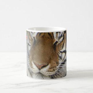 Sleepy tiger mug