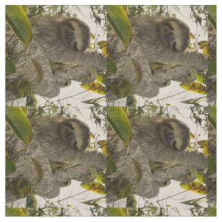 sloth fabric