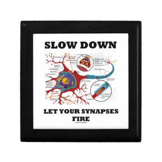 Slow Down Let Your Synapses Fire Neuron / Synapse Gift Box