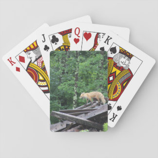 Sly as a fox playing cards