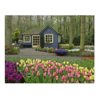 Small cottage flower shop Keukenhof Gardens Post Cards