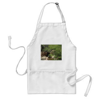 Small Oasis Aprons