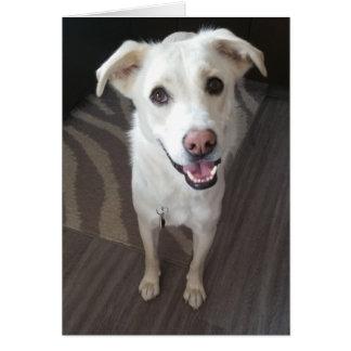 Smiley dog greeting card - blank inside