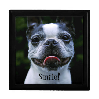 Smiling Boston Terrier Gift Box