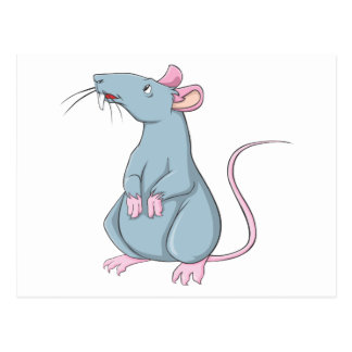 Smiling Rat Postcard