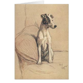 Smooth Fox Terrier, Card