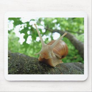 Snail Mouse Pad