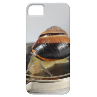 Snail on a watch iPhone 5 case
