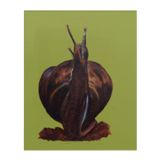 Snail Pastels  Drawing Wood Wall Acrylic Wall Art
