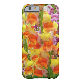 Snapdragons iPhone 6 Case Barely There iPhone 6 Case