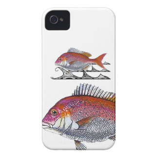 snappers - tribal waves iPhone 4 cover
