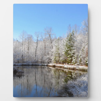 Snow covered landscape around the pond plaques