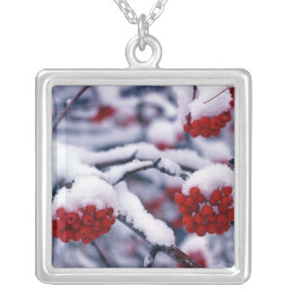 Snow on European Mountain Ash Berries, Utah. Silver Plated Necklace