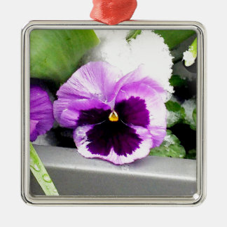 Snow pansy Silver-Colored square decoration