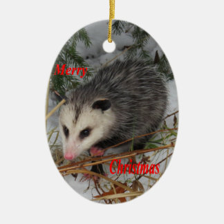 Christmas Possum Gifts - T-Shirts, Art, Posters & Other Gift Ideas ...