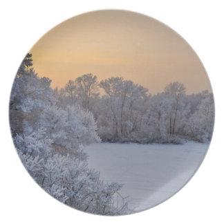 Snowscene Christmas Season's greetings holidays Plates