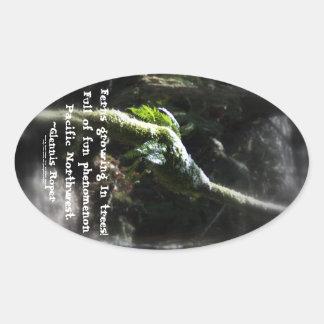 snowy Oregon ferns in trees 2 with haiku Oval Sticker