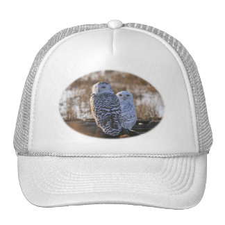 Snowy Owl Couple Mesh Hat