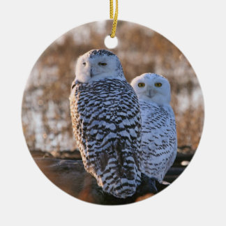 Snowy Owl Couple Round Ceramic Decoration