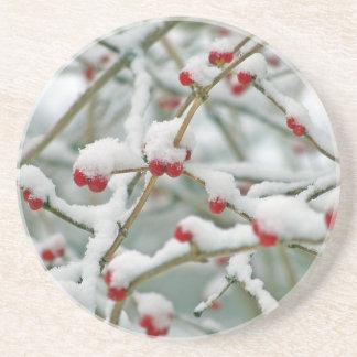 Snowy Red Berries Winter Scene Coaster