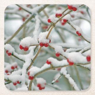 Snowy Red Berries Winter Scene Square Paper Coaster